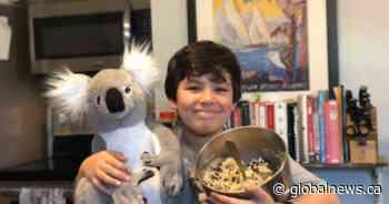 Emmett Flores the 'koala kid' raising funds for Australian wildlife
