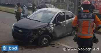 Conductor impactó una palmera en avenida Francia de Valdivia: iba bajo efectos del alcohol - BioBioChile
