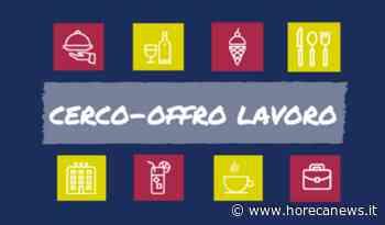 Offerta di lavoro - Barista - Villafranca di Verona (VR) - Horeca News