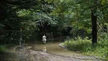 Comment Saint-Rémy-les-Chevreuse a libéré sa rivière Yvette - Les Échos