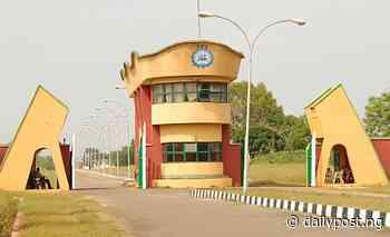 Alleged cultism: Ilaro Polytechnic SUG President granted bail as Ogun govt intervenes - Daily Post Nigeria