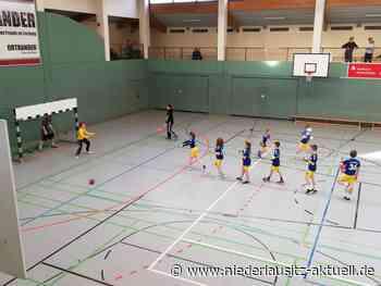HC Spreewald: E-Jugend spielte gegen Finsterwalde und Elsterwerda - NIEDERLAUSITZ aktuell