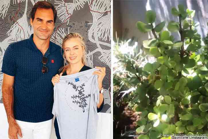 Roger Federer promotes a cure for air pollution after Credit Suisse criticism