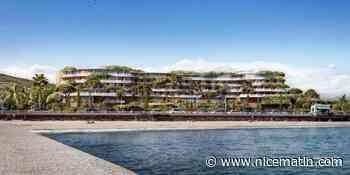 PHOTOS. Spa, champ de lavandes, rooftop... Ce que l'on sait déjà des deux hôtels quatre étoiles en projet à Cannes
