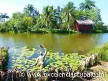 Ciénaga de Zapata impresionante destino de naturaleza en Cuba - Excelencias News Cuba