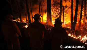 Sin control incendio que destruyó 500 hectáreas de páramo en Socotá, Boyacá - Caracol Radio