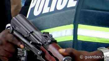 Police nab five suspected armed robbers, herbalist in Ogun - Guardian
