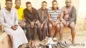 The suspects arrested over armed robbery by police in Ogun - Daily Trust