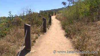 Muere senderista en el área de Anza-Borrego - Telemundo San Diego