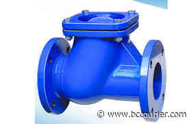 Global Plastic Check Valves Market 2020 Growth Factors – Flomatic Valve, Plast-O-Matic, Asahi/America - Bandera County Courier