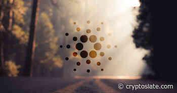 Cardano (ADA) sees huge YTD network activity growth - CryptoSlate