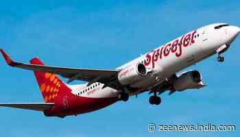 SpiceJet announces 20 new domestic flights; check launch date, routes