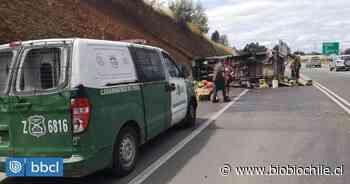 Tres personas resultaron heridas tras volcamiento de furgón con fruta en Valdivia - BioBioChile