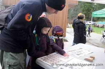 Raptors take over Kanaka Creek centre in Maple Ridge - Maple Ridge News
