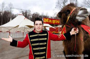 Zirkus gastiert in Bischofswerda - Sächsische Zeitung