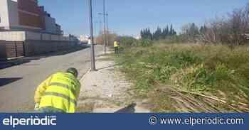 Conselleria instalará el medidor de partículas en la playa de Almassora el 25 de marzo - elperiodic.com