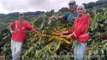 Agricultores familiares de Espera Feliz/MG viram referência na produção de cafés especiais - Notícias Agrícolas
