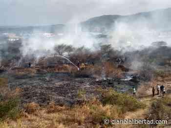 Incendio consume tres hectáreas de bosque seco en Puerto Colombia - Diario La Libertad