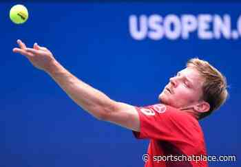 David Goffin vs. Egor Gerasimov - 2/20/20 Marseille Open Tennis Pick, Odds, and Predictions - Sports Chat Place