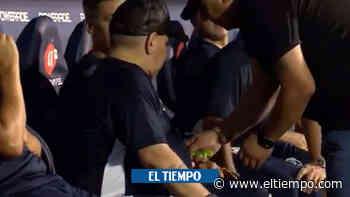 ¿Qué consumió Maradona en pleno partido?, polémica en Argentina - El Tiempo