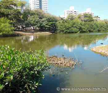 Ciénaga de Las Quintas y caño Bazurto, en la mira - El Universal - Colombia