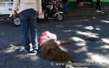 Atropella y mata a un indigente en La Purísima - El Sol de Puebla