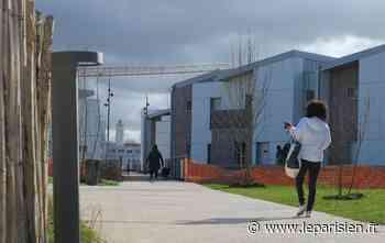 Municipales à Bussy-Saint-Georges : le Sycomore est-il vraiment un écoquartier ? - Le Parisien