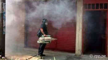 Dengue   Confirman 25 casos en La Libertad, la mayoría de Ascope - RPP