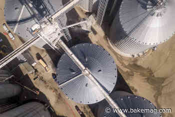 Bay State Milling expands Arizona flour mill with new grain elevator - bake Magazine