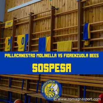 Pallacanestro Molinella vs Fiorenzuola Bees non si giocherà: ufficiale la sospensione della gara - romagnasport.com