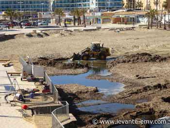Xàbia da salida al agua putrefacta que causa hedor en la playa del Arenal - Levante-EMV