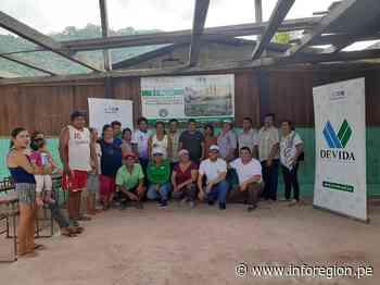 Incorporarán 200 nuevas hectáreas de cultivos de cacao en San Martín - INFOREGION