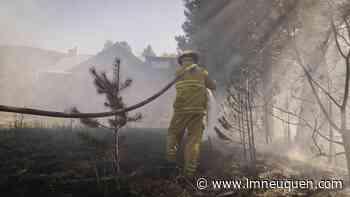 San Martín: evitaron que un incendio en el bosque alcance una vivienda - Lmneuquen.com
