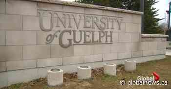 University of Guelph admits 'toxic environment' was fostered within athletics program
