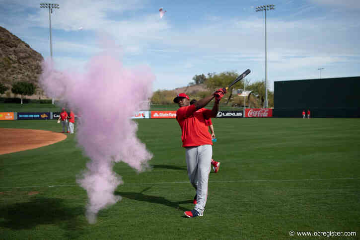 Mike Trout and Justin Upton help Vegas couple with gender reveal