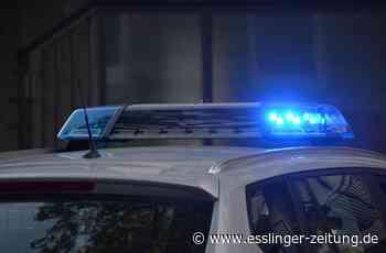 Einbruchversuch in Schulgebäude: Hoher Sachschaden trotz Misserfolg - esslinger-zeitung.de