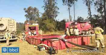 Alcalde de Pitrufquén criticó respuesta de Gobierno para combatir incendio forestal en sector Chada - BioBioChile