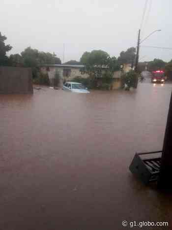 Temporal causa pontos de alagamento e arrasta veículos em Osvaldo Cruz; VÍDEO mostra resgate de mulher - G1