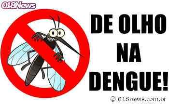 Ilha Solteira tem morte de idosa por suspeita de dengue hemorrágica - 018news