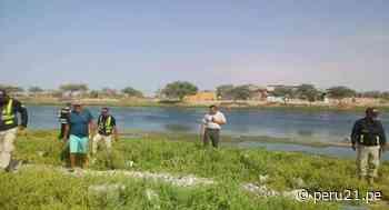 Sereno desaparecido es encontrado muerto y flotando en río Sechura con hematomas en el cuerpo - Diario Perú21