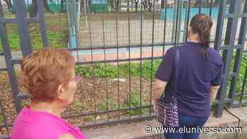 Pitbulls matan a gatos; revuelo en la Pradera, sur de Guayaquil - El Universo