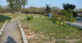 Avanza labor en jardín de mariposa Monarca - El Mañana de Reynosa
