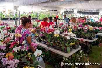 Orquídeas para todos los gustos en la exposición del Jardín Botánico - Diario Libre