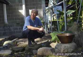 Voluntario construye primer jardín japonés en San Pedro Sula - La Prensa de Honduras