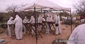 Viven en San Luis drama de la búsqueda de desaparecidos - Pulso de San Luis
