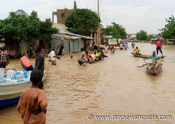 Photo News: Jimeta Yola becomes a river - P.M. News - P.M. News