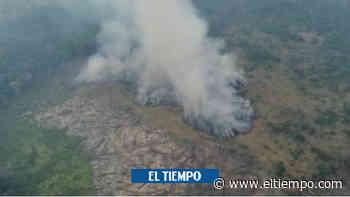 El impactante incendio que ha consumido 3.400 hectáreas en La Macarena - El Tiempo