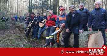 Bad Waltersdorf: Fünf-Tonnen-Tanne für Blochziehen gefällt - Kleine Zeitung