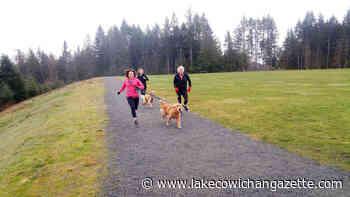 Shawnigan Hills parkrun report for Feb. 15 - Lake Cowichan Gazette