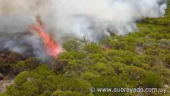 Continúa el fuego en el cerro Pan de Azúcar por tercer día consecutivo - Subrayado.com.uy